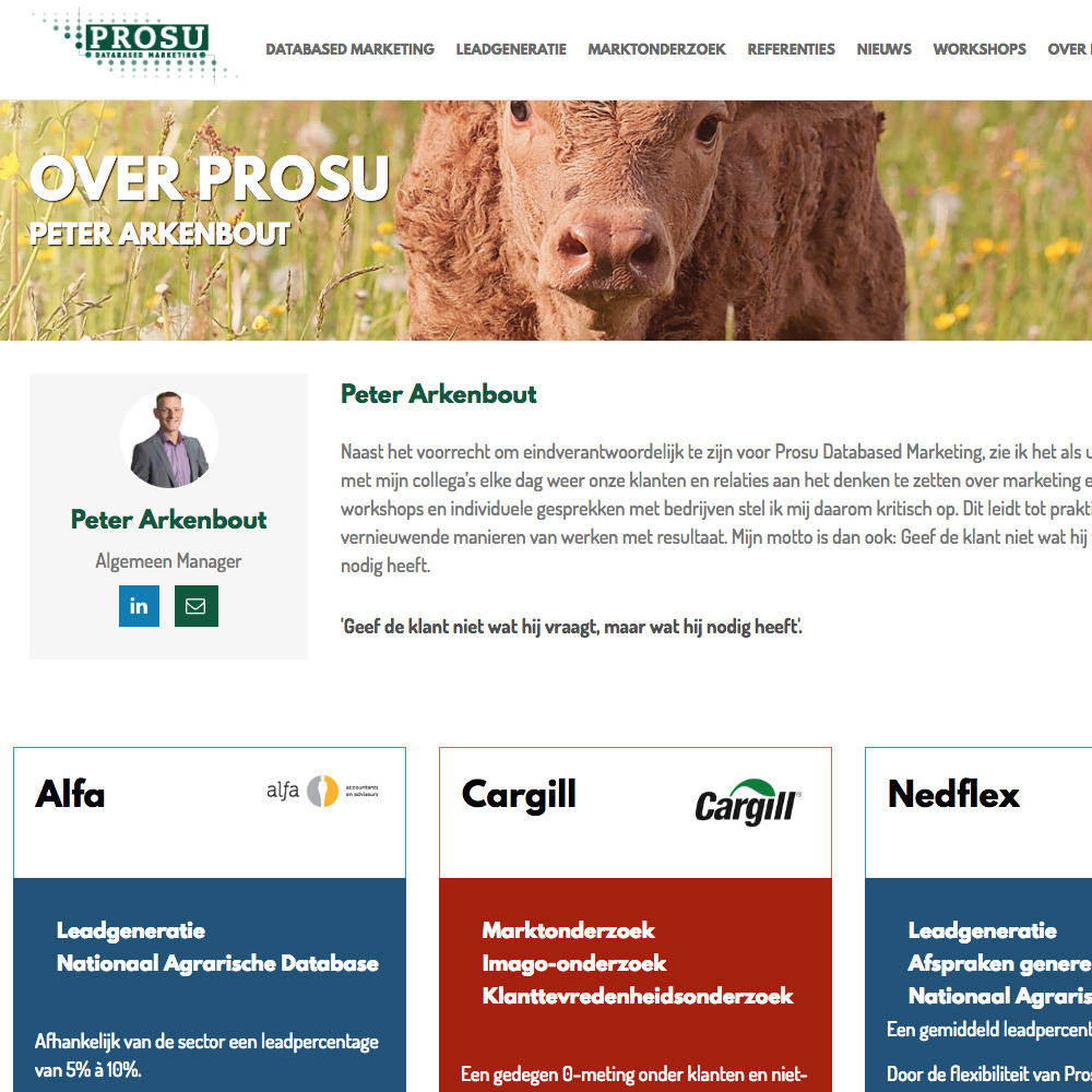 Prosu Databased Marketing Ontwerp en realisatie website